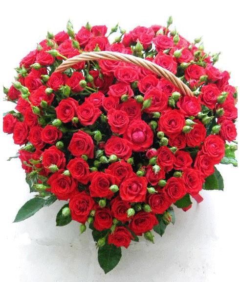 Цветы для мужчин какие цветы дарят мужчинам Видео