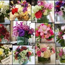 Какие цветы дарят на свадьбу молодоженам любимые гости и родители. Фото и советы